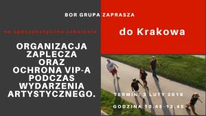 Organizacja zaplecza oraz ochrona VIP-a podczas wydarzenia artystycznego